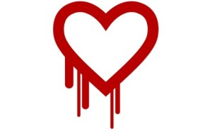 The Heartbleed Bug is a serious vulnerability in the popular OpenSSL cryptographic software library.